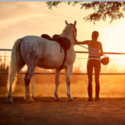 young lady with horse at facility image
